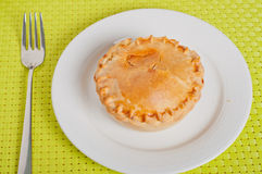 Free Chicken Vegetable Pie Royalty Free Stock Photography - 30209017