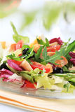 Chicken and vegetable salad Royalty Free Stock Images