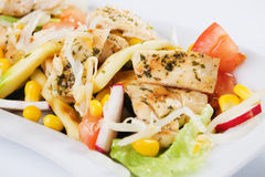 Chicken and vegetable salad. Grilled chicken breast and vegetable salad in white plate Stock Photography