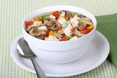 Chicken Vegetable Soup Royalty Free Stock Photos