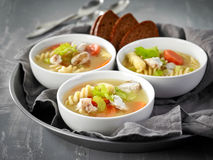 Chicken and vegetable soup Royalty Free Stock Photography