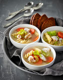 Chicken and vegetable soup Royalty Free Stock Image