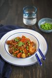 Chicken and vegetable stew in tomato sauce served on rice royalty free stock photography