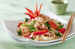 Chicken and vegetable stir fry Royalty Free Stock Photography