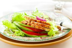 Chicken and vegetables salad Royalty Free Stock Images