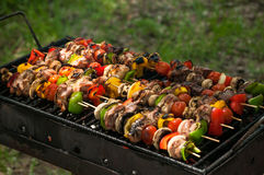 Chicken and vegetables skewers. Grilled chicken skewers with vegetables stock photos