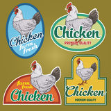 Chicken vintage labels. For using in different spheres Royalty Free Stock Photo