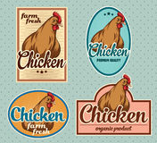Chicken vintage labels. For using in different spheres Royalty Free Stock Photos