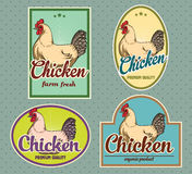 Chicken vintage labels. For using in different spheres Stock Images