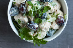 Chicken Waldorf Salad Stock Photography