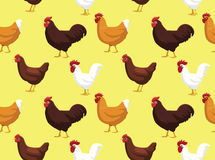 Chicken Wallpaper 1 Royalty Free Stock Photography