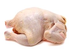 Chicken on white Stock Photography