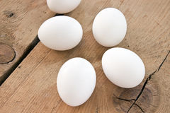 Chicken white eggs Stock Images