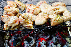 Chicken white meat on grill Royalty Free Stock Photos