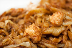 Chicken white meat with spaghetti on the Chinese way Stock Images