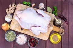 Chicken whole carcass with spices for cooking dishes. Studio Photo Stock Images