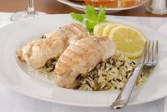 Chicken and wild rice Royalty Free Stock Photo