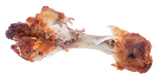 Chicken Wing on white background stock photography