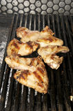 Chicken wings on the grill Royalty Free Stock Image