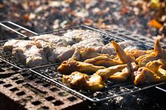 Chicken wings on the grill and pork Royalty Free Stock Image