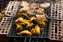 Chicken wings on the grill and pork Royalty Free Stock Photography