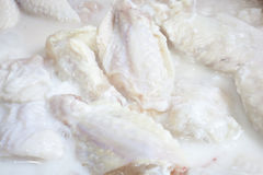 Chicken Wings Marinating. Raw chicken wings marinating in Buttermilk Royalty Free Stock Photo