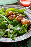 Chicken wings and vegetable salad Royalty Free Stock Image