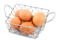 Chicken wire basket filled with eggs. Chicken wire basket filled with chicken eggs isolated royalty free stock photography