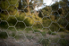 Chicken wire fence. A chicken wire fence in the country stock images