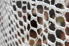 Chicken wire with ice. Chicken wire covered in ice after a snow storm royalty free stock image