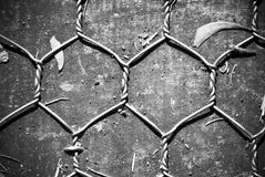 Chicken wire on wooden background. In black and white stock images