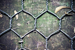 Chicken wire on wooden background. Top view of Chicken wire on wooden background stock photo