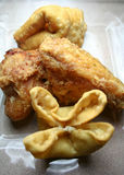 Chicken and Wontons. A close up view of a snack sized portion of fried chicken and cream cheese wontons Royalty Free Stock Image