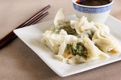 Chicken wontons Stock Photography