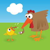Chicken and worm Royalty Free Stock Photo