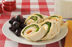 Chicken wrap sandwich and grapes Stock Image