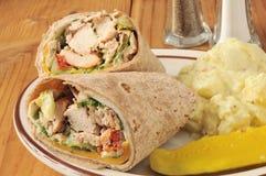 Chicken wrap sandwiches Stock Photos