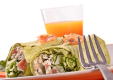 Chicken wrap with vegetables Stock Image