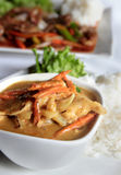 Chicken yellow curry Royalty Free Stock Photography