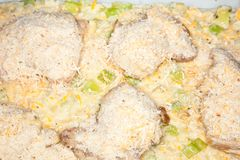 Chicken-Zucchini Casserole Royalty Free Stock Photo