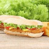 Chickenburger chicken burger hamburger and fries Stock Images