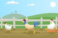 Chickens. Illustration of a turkey running after a chicken while leaving the other chicken behind resting on the eggs. Image illustrates a business metaphor Stock Illustration