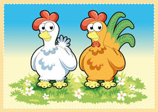 Chickens Stock Image