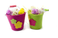Chickens. Easter colored chickens, pails, isolated, positive, toy Royalty Free Stock Images