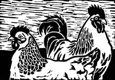 Chickens. Black and white light sussex chicken linocut print illustration Royalty Free Stock Photos