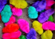 Chickens colorful Stock Images
