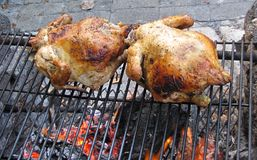 Chickens cooking on an open pit Stock Photos