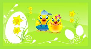 Chickens couple on happy green easter background Royalty Free Stock Image