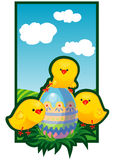 Chickens and easter eggs Stock Photos