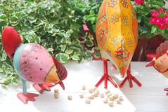 Chickens eating. Close-up of decorative chicken and hen eating Royalty Free Stock Images